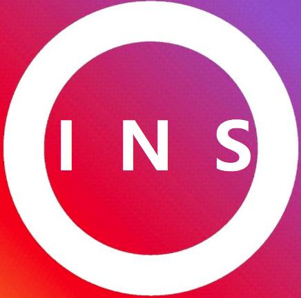 INS网页版